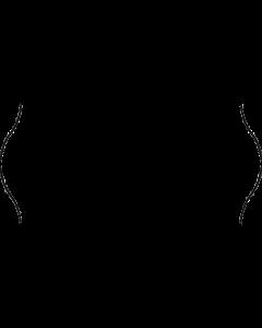 Etiquettes, 26x12 mm, blanches, congélation