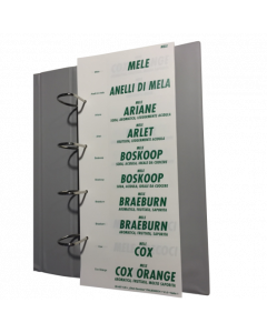 Assortiment de textes fruits & légumes blanc-vert, italien